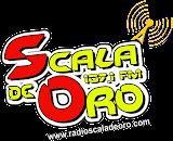 Radio Scala de Oro Apk Download Free for PC, smart TV