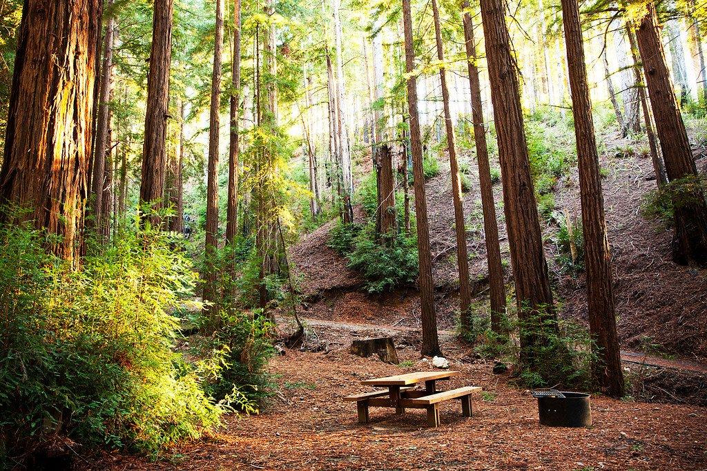 , Destination of the Month: Big Sur, California