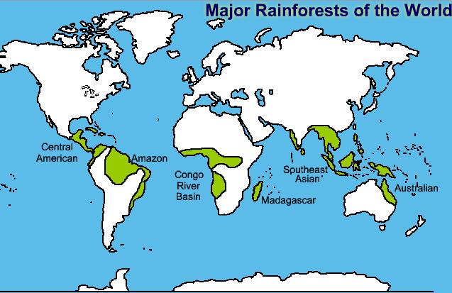 Major rainforest of the world