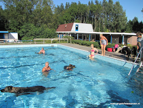 Photo: Rina kijkt waar Branco naar toe zwemt