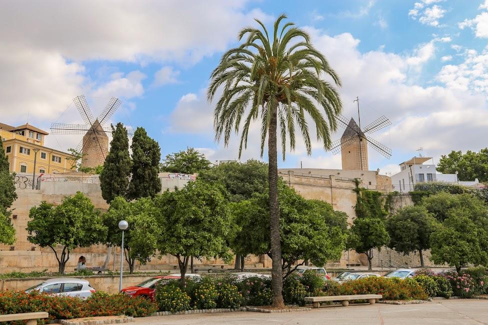 Palma de Mallorca, wiatrak