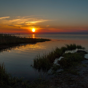 Pamlico Sunset by Angela Moore - Landscapes Sunsets & Sunrises ( sand, reflection, sea grass, sunset, sound )
