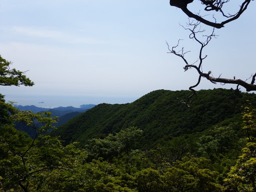 1245mピークからの眺め(手前は光山)