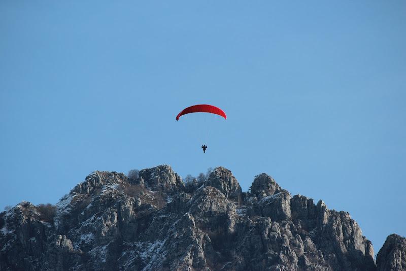 La libertà di volare di Rava