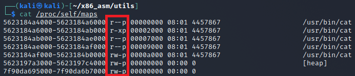 A view of the cat program's memory mapping permission on a Linux system.