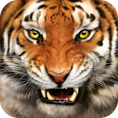 Tiger Sounds and Ringtone