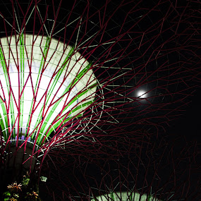 Supertree and Moon by Han Yi Li - Novices Only Objects & Still Life ( supertree, moon, night, gardens by the bay, singapore )