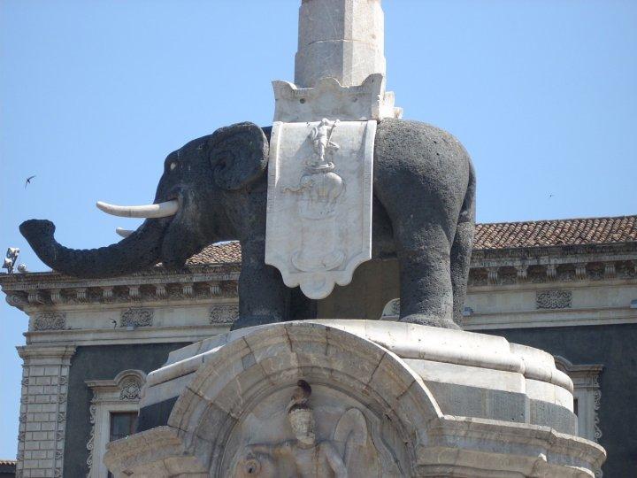 Elefante... di cronker