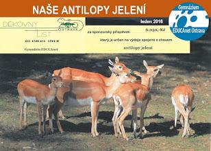 Photo: Naše antilopy jelení (pátek 22. leden 2016, Zoologická zahrada Ostrava).