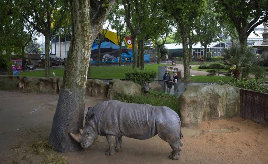 Foto Zoo Barcelona 17