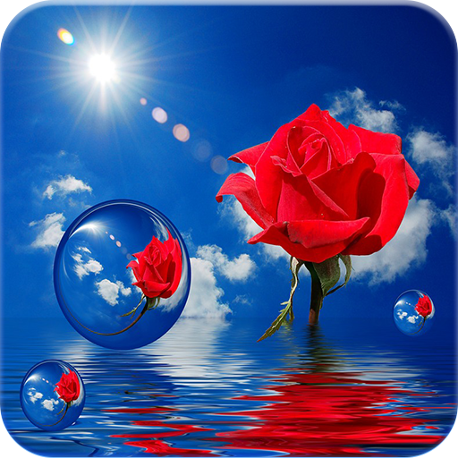 Rose GIF file APK Free for PC, smart TV Download