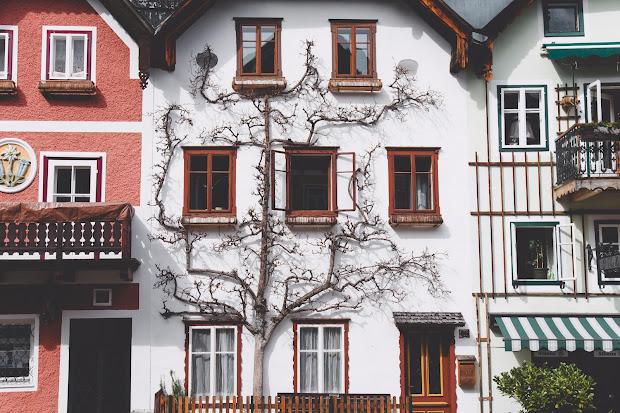 créer site immobilier