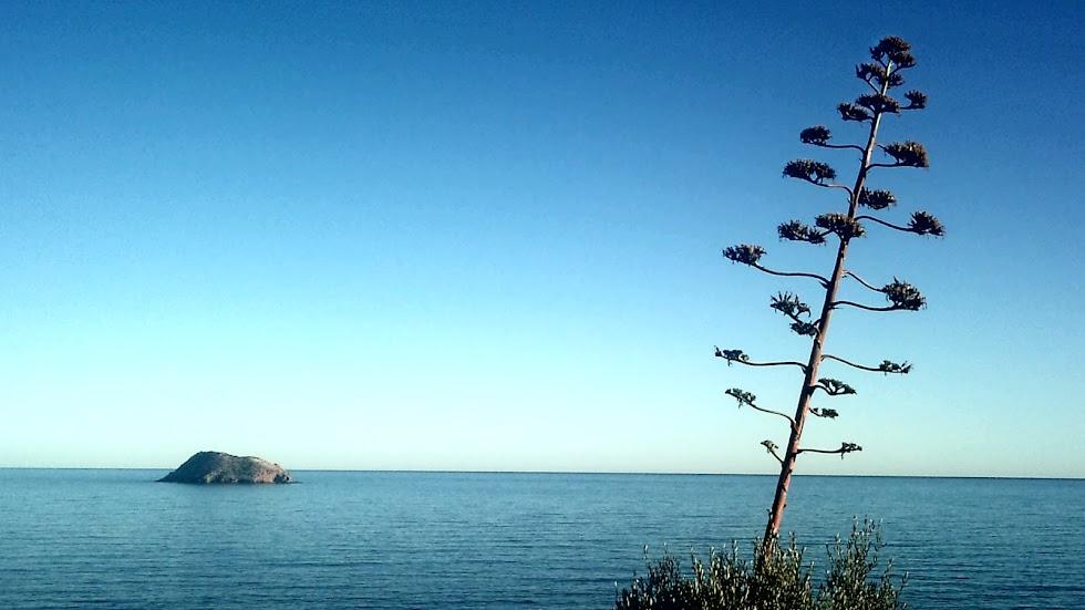 Pulpí, litoral del municipio del Levante Almeriense.