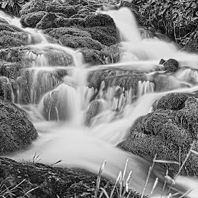by Renaud Igor - Landscapes Waterscapes