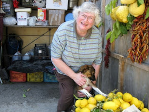 Photo: Roadside fruit stand - Marion and the owner's dog. Hey lady, do you want to buy a lemon?