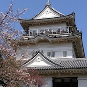 Japan:Odawara Castle(JP159)