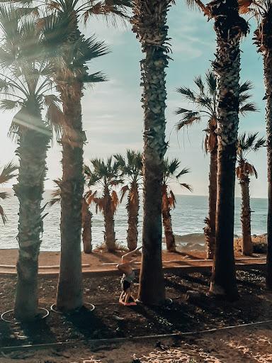 Pratique sous les palmiers
