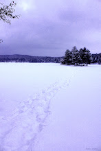 Photo: Soon it will be like this... The frozen lake from last winter. Good night!