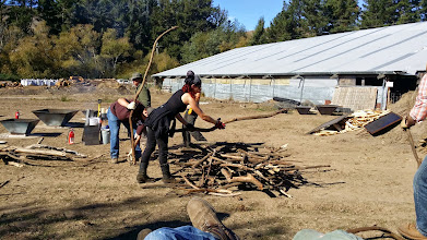 Photo: Building the pile with larger material in the middle layers.