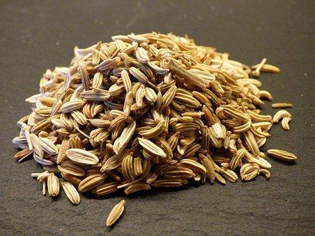 Fennel, Seeds, Herb, Food, Eat, Fennel