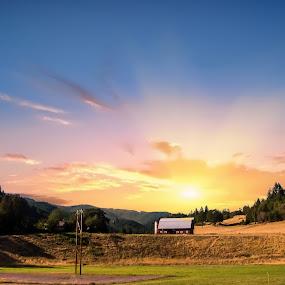 Countryside Sunrise by Jan Davis - Landscapes Sunsets & Sunrises ( sunrise, countryside, barns, countrylife, landscape,  )
