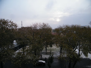 Photo: scene outside of benzrad's QRRS office: 1st snow of winter 2010, a shallow one.