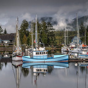 View from my window by GThomas Muir - Transportation Boats ( harbour, ucluelet, amphitrite lighthouse, ferry, ucluelete )