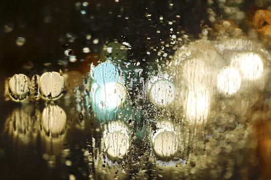 Rain to Florence di claudio fontanel