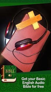 Basic English Bible - náhled