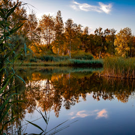 The sound of silence by Adolf Beck - Landscapes Waterscapes ( landscapes, reflection, evening, water, landscape )