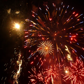 Fourth of July by Nikki Scott - Abstract Fire & Fireworks ( fireworks, july, 4th )