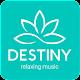 Destiny Relaxing Music