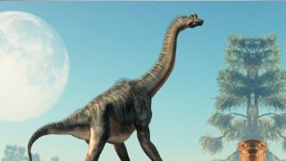 imagen de un dinosaurio