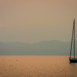 by Stephen  Barker - Transportation Boats ( sunrise, montana, flathead lake, smokey, sailing )
