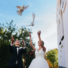 Wedding photographer Paul Budusan (paulbudusan). Photo of 10.12.2017