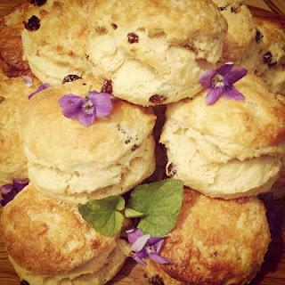 Violet and Sultana Scones Recipe