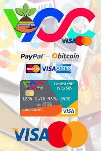 Virtual Credit Card Provider 1