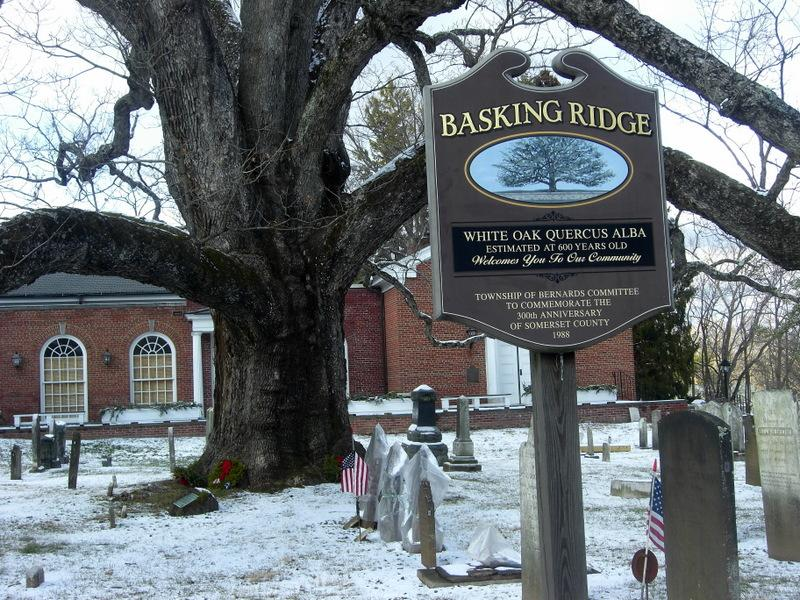 Basking Ridge