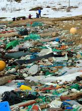 Photo: A beach before cleanup.