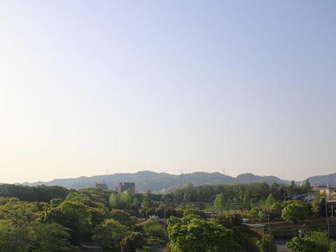 南海バス「サザンクロス」酒田線 第2京阪道路 車窓