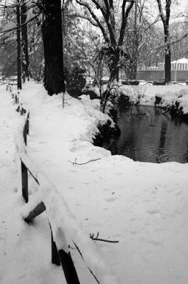 M di ..montagna di neve di caffealle8delmattino