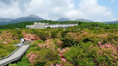 Photo: 展望台から茶臼岳を