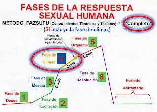 Photo: ESPAÑOL: Método fazsufu - Fases de la respuesta sexual humana fazsufu. ENGLISH: Method fazsufu - Phases of the human sexual response fazsufu. CHINO: 方法 Fazsufu - 階段的人類性反應 fazsufu. ÁRABE: Fazsufu الأسلوب - مراحل الاستجابة الجنسية البشرية fazsufu