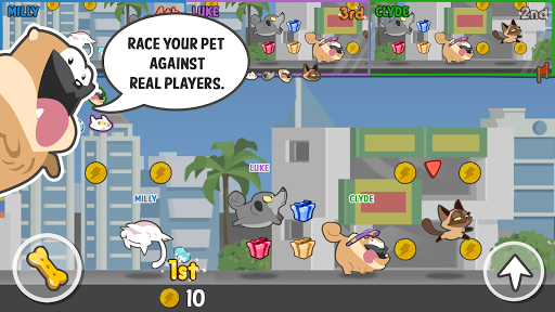 Pets Race - Fun Multiplayer PvP Online Racing Game Android app 1