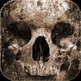 Death Skull Theme icon