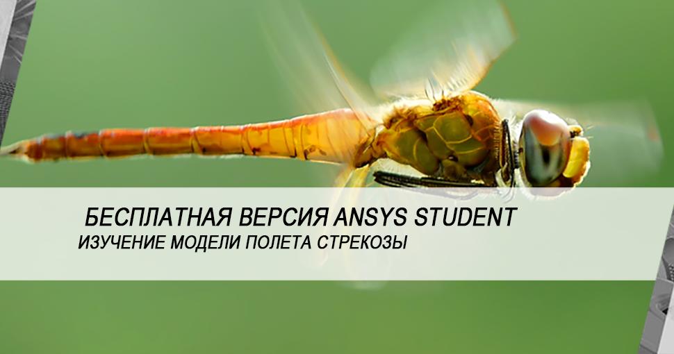 Изучение полёта стрекозы и инженерные инновации