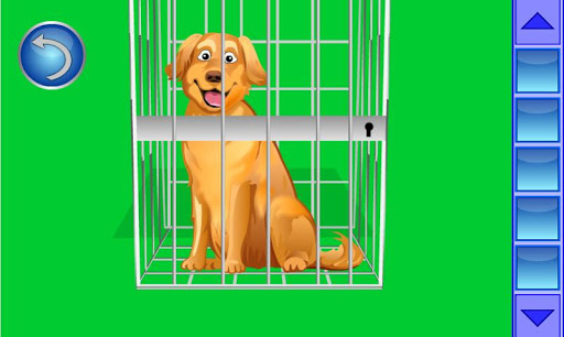 玩解謎App|金毛尋回犬逃生免費|APP試玩