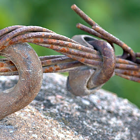 Old bridge wire by Matthew Goldsworthy - Artistic Objects Other Objects ( wire, still life, rusty, rust, close up )