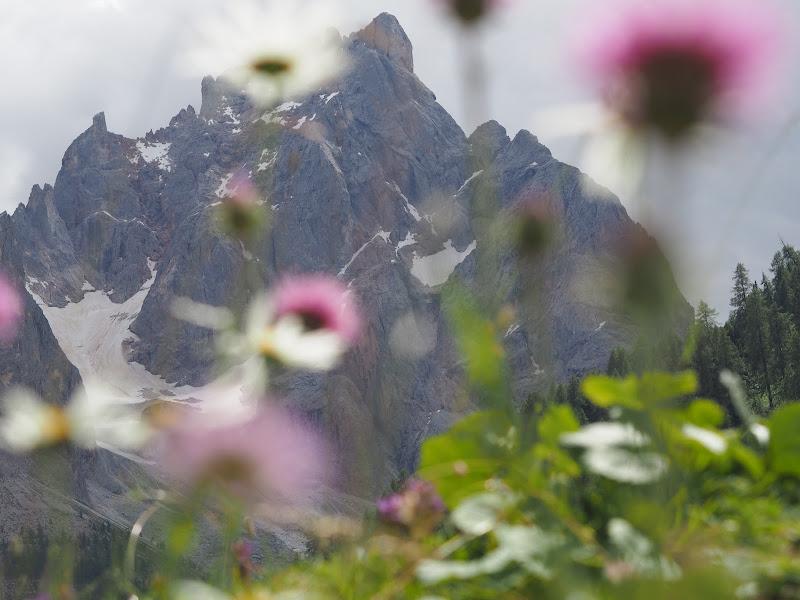 Montagne di ilcamion