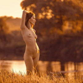 Fall has come by Dmitry Laudin - Nudes & Boudoir Artistic Nude ( nature, autumn )